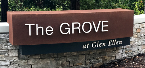 the grove at Glen Ellen